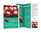 0000016914 Brochure Templates