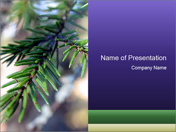Aromatic Spruce PowerPoint Template