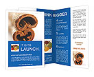 0000016978 Brochure Templates