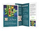 0000017074 Brochure Templates
