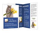 0000017100 Brochure Templates