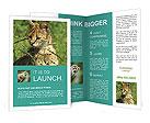 0000017162 Brochure Templates