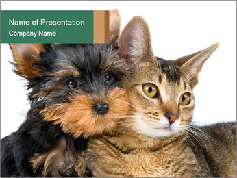 Cute Puppy with Kitten PowerPoint Template