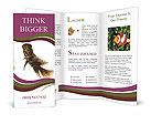 0000017230 Brochure Templates