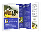0000017261 Brochure Template