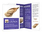 0000017273 Brochure Templates