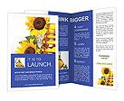 0000017391 Brochure Templates
