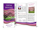 0000017395 Brochure Templates