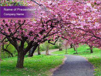 Printemps Cherry Blossom Garden Modèles des présentations  PowerPoint