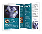 0000017688 Brochure Templates