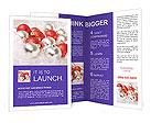0000017817 Brochure Template