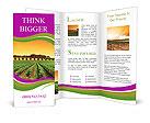 0000017838 Brochure Templates