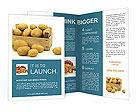 0000017996 Brochure Templates