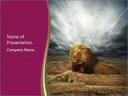 Africa powerpoint template smiletemplates wild lion in africa powerpoint template toneelgroepblik Images