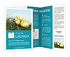 0000018029 Brochure Templates