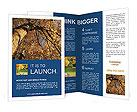 0000018057 Brochure Templates