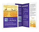 0000018075 Brochure Templates
