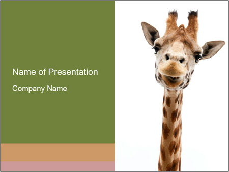Funny Curious Giraffe PowerPoint Template Backgrounds ID