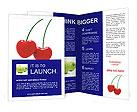 0000018138 Brochure Templates