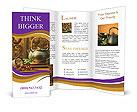 0000018166 Brochure Templates