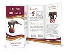 0000018207 Brochure Templates