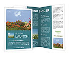 0000018260 Brochure Templates