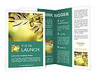 0000018331 Brochure Templates