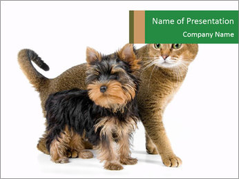 Cute Puppy and Kitten Together PowerPoint Template