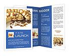 0000018922 Brochure Templates