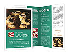 0000019072 Brochure Templates