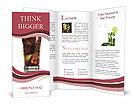 0000019251 Brochure Templates