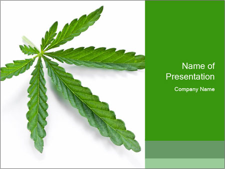 green cannabis leaf powerpoint templates