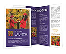 0000019507 Brochure Templates