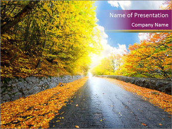 Wet Road During Autumn Season PowerPoint Template