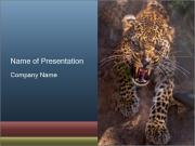 Hungry Leopard PowerPoint Templates