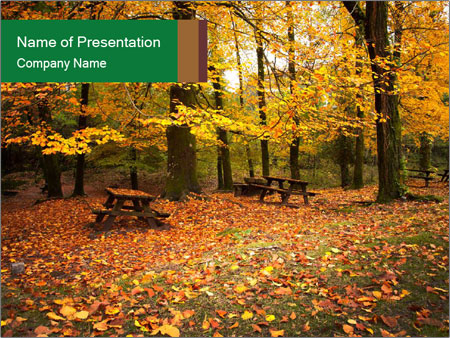 colorful autumn forest powerpoint template