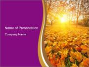 Forest in Golden Season PowerPoint Templates