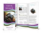 0000019766 Brochure Templates