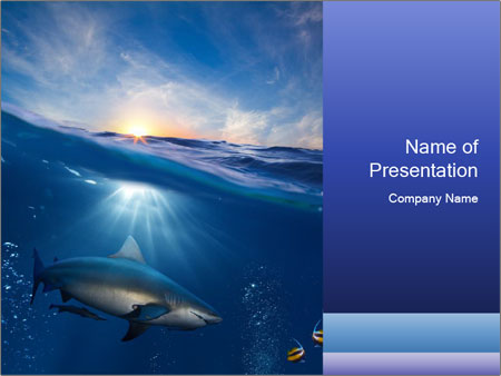 Dangerous Shark In Sunbeam Powerpoint Template Backgrounds Google