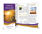 0000019895 Brochure Templates