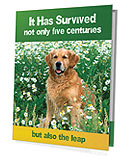 Purebred Golden Retriever Presentation Folder