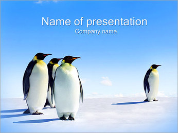 Emperor Penguins PowerPoint Template