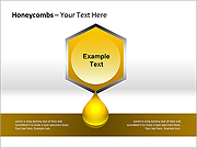 Honeycombs PPT Diagrams & Charts