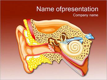 Ear Anatomy PowerPoint Template