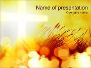 Yellow Field PowerPoint Templates