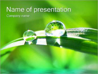 Gouttes d'eau sur l'herbe Modèles des présentations  PowerPoint - Diapositives 1