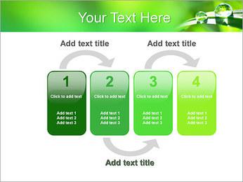 Gouttes d'eau sur l'herbe Modèles des présentations  PowerPoint - Diapositives 11