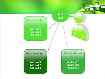 Gouttes d'eau sur l'herbe Modèles des présentations  PowerPoint - Diapositives 12