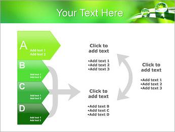 Gouttes d'eau sur l'herbe Modèles des présentations  PowerPoint - Diapositives 16
