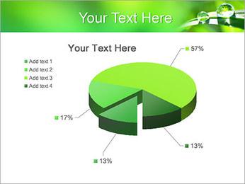 Gouttes d'eau sur l'herbe Modèles des présentations  PowerPoint - Diapositives 19